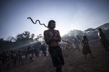 Mortes contabilizadas pelas organizações indígenas são de 15 parentes, um salto de 50% de óbitos nos últimos quatro dias (Foto: Divulgação/Apib)