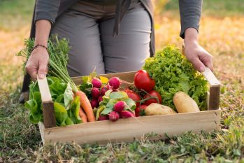 Um cardápio saudável também ajuda no bom funcionamento do intestino, desde que haja um consumo regular de fibras e  vegetais, por exemplo. Foto: Divulgação