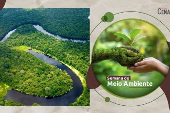 Dia Mundial do Meio Ambiente é comemorado em 5 de junho. (arte: REVISTA CENARIUM)