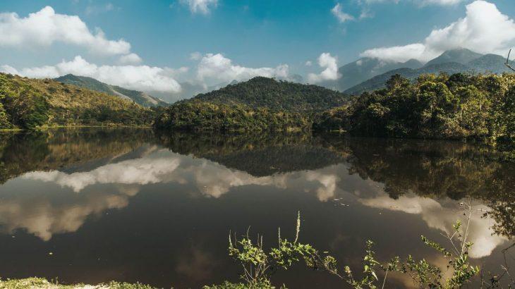 Como parte de um programa de reflorestamento, a reserva do Guapiaçu é um bom exemplo de como recuperar áreas degradadas para o uso das novas gerações (Reprodução/Divulgação)