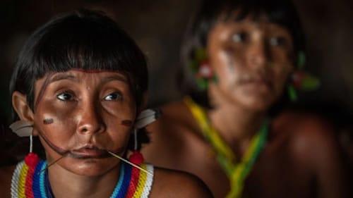 Os povos indígenas são os mais prejudicados em decorrência da pandemia de Covid-19. (Reprodução/Internet)