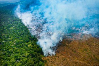 Segundo dados do INPE, o desmatamento na Amazônia voltou a crescer no mês de maio (Divulgação/Imazon)