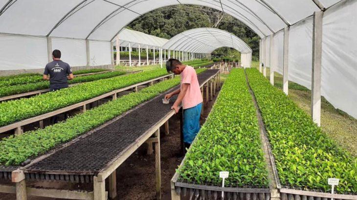 São oito novos fiscais que vão cuidar da defesa vegetal (Divulgação/Adaf)
