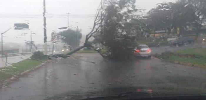 A Defesa Civil catarinense contabiliza nove mortos no estado e uma pessoa desaparecida em decorrência do ciclone extratropical (Reprodução/Internet)