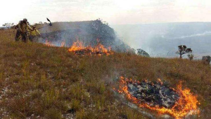 O clima seco na região dificulta o trabalho das equipes (foto: ICMBio/Divulgação)
