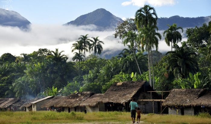 Covid-19 chegou à comunidade do Maiá, Terra Indígena Yanomami (reprodução/ internet)