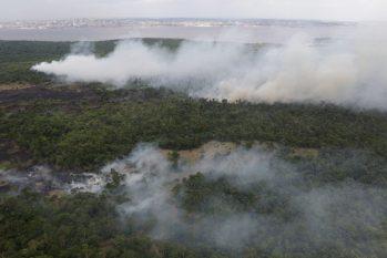 Com 52% de aumento em focos de incêndio, governo do Amazonas declara reforço no combate a queimadas