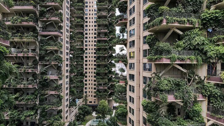 Apartamentos com varandas cobertas por plantas em conjunto residencial em Chengdu, província de Sichuan, no sudoeste da China (Reprodução/AFP)