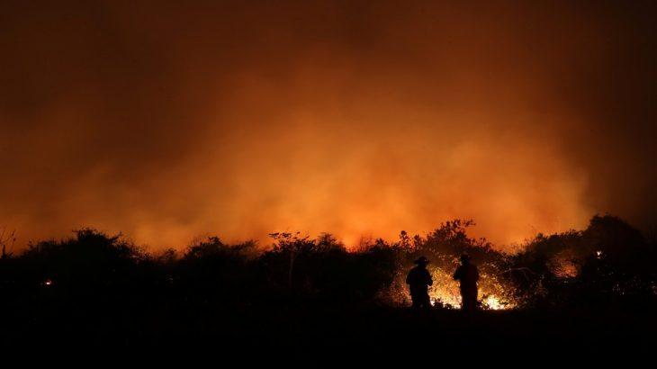 Três meses antes de terminar, 2020 também ultrapassou o recorde de queimadas em um ano para o bioma (Reprodução/ Internet)