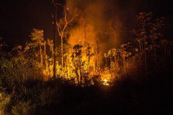Até o dia 23 de setembro foram registrados mais de 28 mil focos de incêndios na Amazônia(Reprodução/João Paulo Guimarães)
