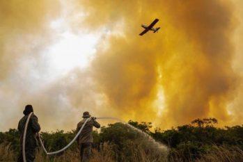 Trata-se da maior seca registrada no Pantanal nos últimos 50 anos, com 12% da área consumida pelas chamas (Reprodução/ Internet)