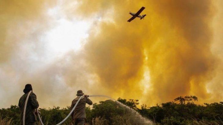 O Pantanal tem atravessado período de queimadas e destruição do bioma (Divulgação/CBMS)