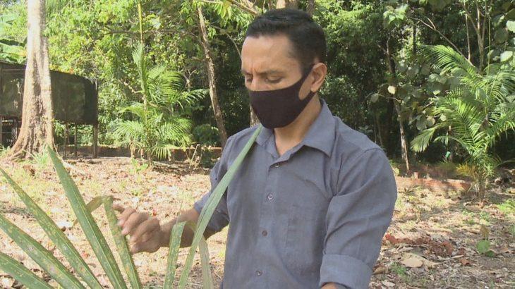 Um dos responsáveis pelo estudo, o pesquisador Tonny Medeiros estima a existência de novas espécies da planta tropical (Rede Amazônica/Reprodução)