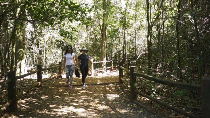 Medida estabelece critérios para a adesão de novos trajetos nacionais e regionais à RedeTrilhas, que conecta pontos do patrimônio cultural e natural (© Divulgação/ TV Brasil)