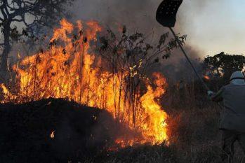 As queimadas neste ano na região do Pantanal se devem principalmente a uma