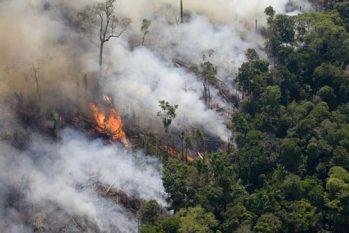 O Inpe registrou 10.834 focos de fogo na Amazônia até o dia 15 deste mês (Foto: Rodrigo Baleia/Greenpeace