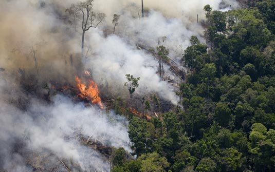 Em 15 dias, Amazônia já tem mais fogo que em todo outubro de 2019 e 2018, segundo o Inpe