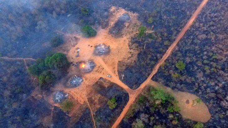 345 terras indígenas foram afetadas pelas queimadas no Brasil em 2019. (Ahmad Jarrah)