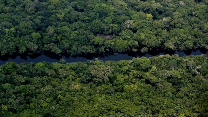 Nós podemos fazer uma história diferente na Amazônia