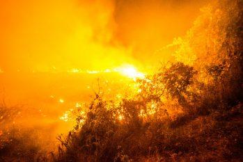 Inpe indica que o total de queimadas para o período já é o maior desde o início dos registros, em 1998 (João Paulo Guimarães/Revista Cenarium)