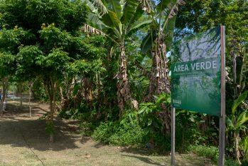 Ao todo, a Prefeitura de Manaus já revitalizou 15 áreas verdes (Alex Pazuello/ Semcom)