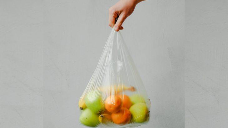 Nem tudo que se domina biodegradável deve ser visto como solução para salvar o ecossistema (Anna Shvets/ Pexels)