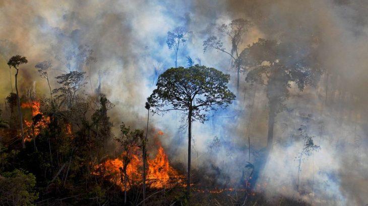 Em meio a queimadas no Pantanal, Vianna Barreto vai assumir o cargo de José Carlos Mendes de Morais, que pediu exoneração há uma semana (Carl de Souza / AFP)