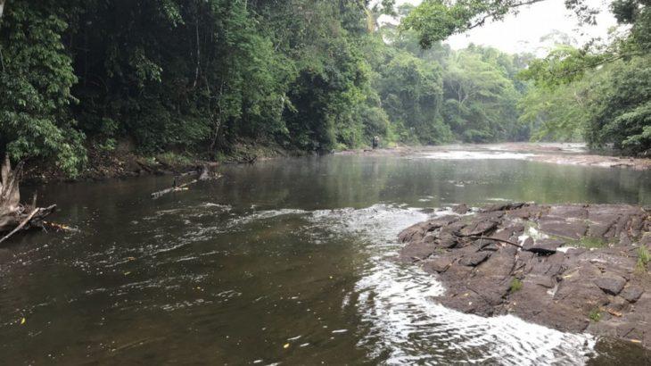 Parque Nacional do Pacaás Novos em Campos Novos de Rondônia, onde O. pacaasnovos foi encontrado (Journal of Fish Biology/ Reprodução)