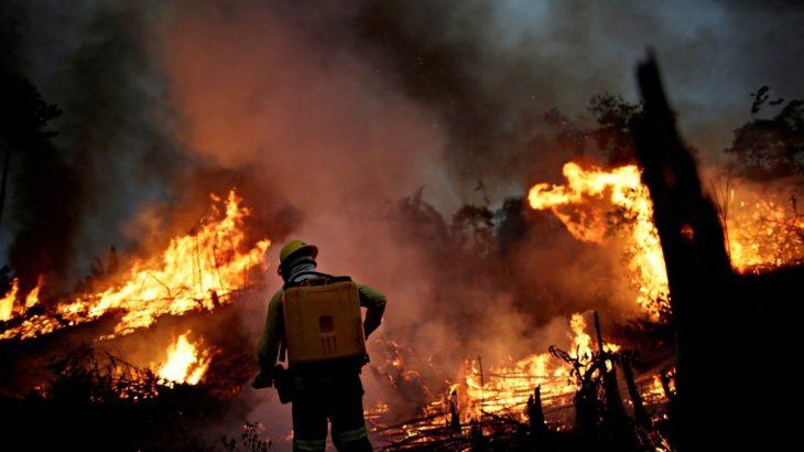 Brigadistas apagando fogo na área de mata (Ueslei Marcelino)