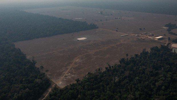 Desmatamento de parte da floresta amazônica na região de Candeias do Jamari, em foto de agosto de 2019 (Victor Moriyama/ Getty Images)