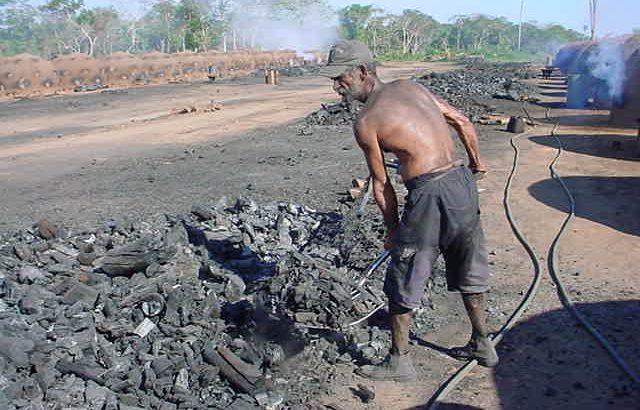 No ano de 2020, foram gastos R$ 1,3 milhão no combate ao trabalho escravo (Reprodução/MTE)