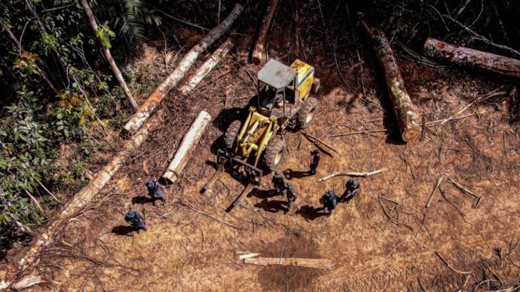 Desmatamento na Amazônia subiu 12,6% do ano de 2020 para 2021.(Alan Assis/Semas)
