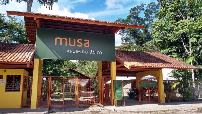 O Museu da Amazônia foi inaugurado em 2009 e está localizado dentro da Reserva Florestal Adolpho Ducke (Reprodução/ Internet)