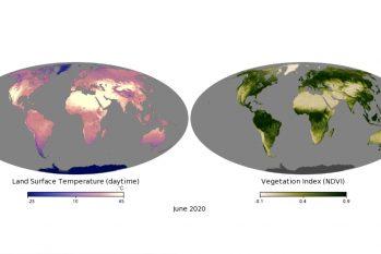 O monitoramento da temperatura e da  vegetação é acompanhado desde os anos 2000. (Reprodução/Nasa)