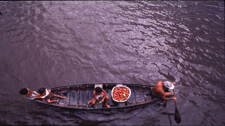 cotidiano amazônico