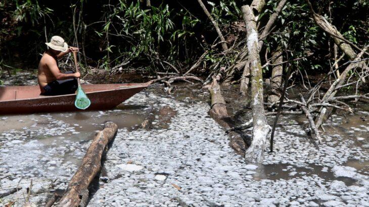 O cenário em 2021 mostra uma poluição que ocorre ao menos desde o ano de 2007. (Ricardo Oliveira/Revista Cenarium)