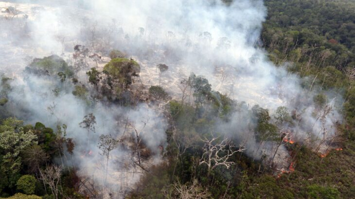 In 2019, more than one billion tons of pollutants were emitted (Ricardo Oliveira / Cenarium Magazine)