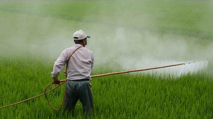 Homem pulveriza agrotóxico em plantação (Zefe Wu/Pixabay)
