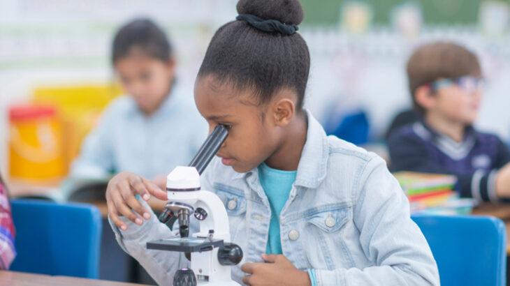 Iniciativa é destinada a meninas do Ensino Básico (Reprodução/Meninas na Ciência EACH)