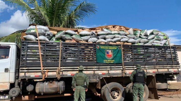 O local não apresentou licenciamento ambiental, e o responsável foi conduzido à Delegacia para responder pelo crime (Divulgação/PMAM)