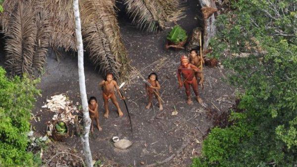 O processo trata de uma ação de reintegração de posse movida pelo governo de Santa Catarina contra o povo Xokleng, referente à Terra Indígena (TI) Ibirama-Laklãnõ, onde também vivem indígenas Guarani e Kaingang. (G. Miranda/Funai)