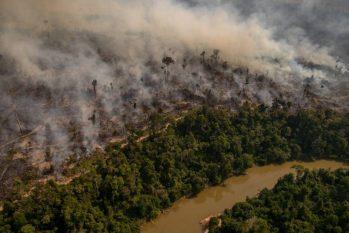 Reserva Extrativista Jaci-Paraná, ardendo em fogo, em Porto Velho (Christian Braga/Greenpeace/Reprodução)