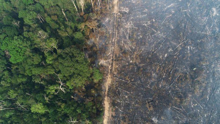 Vista aérea de área queimada na Amazônia, perto de Apuí, no Amazonas, no dia 11 de agosto (Ueslei Marcelino/Reuters)