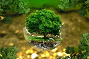 O relatório é a maior avaliação científica sobre os ecossistemas da Amazônia (Reprodução)