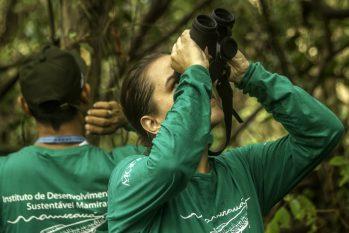 Pesquisadores do Instituto de Desenvolvimento Sustentável Mamirauá (Reprodução/Instituto Mamirauá)