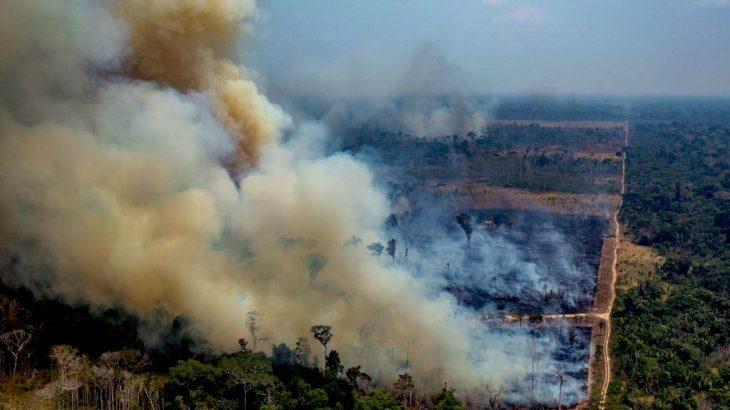 O programa preveniria o aumento de queimadas na Amazônia (Reprodução)