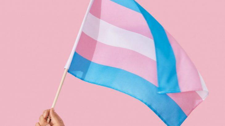 Bandeira oficial da comunidade trans (Reprodução/ Internet)