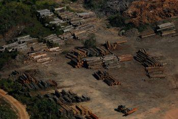 Desmatamento na Amazônia (Bruno Kelly)