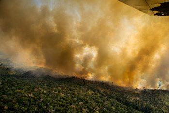 85% das queimadas se concentram em estradas oficiais e não-oficiais. (Christian Braga/Greenpeace)