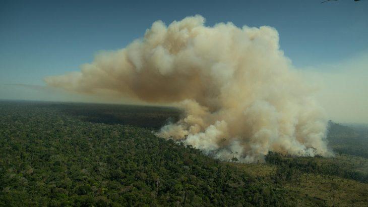 Desmatamento e queimadas ilegais são principais influências para as mudanças climáticas (Christian Braga / Greenpeace)